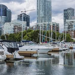 Toronto 2017