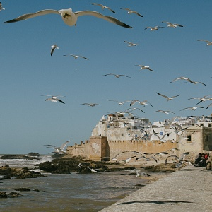 2013_morocco_sense of place
